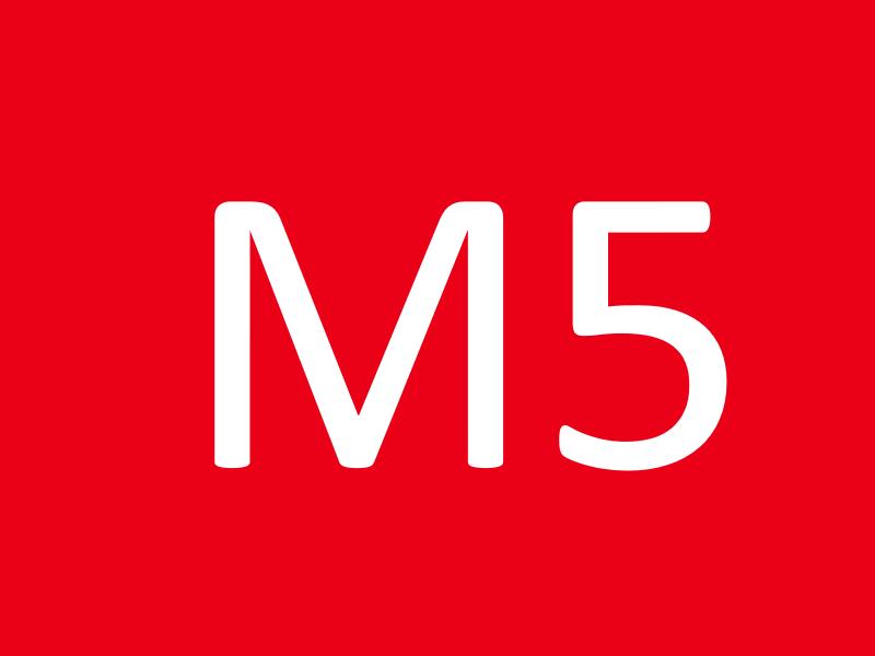 Шпильки М5