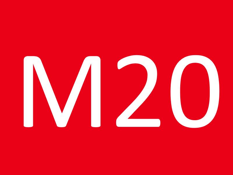 Шпильки М20