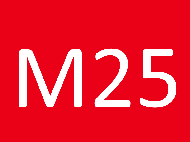 Болты М25