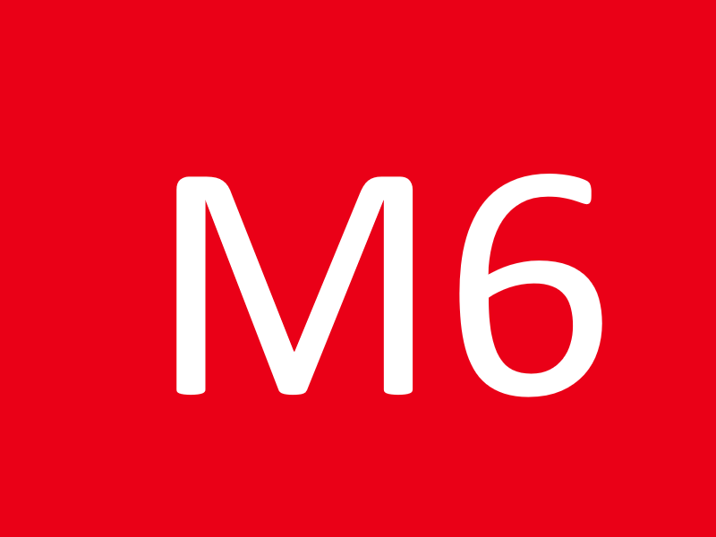 Винты М6