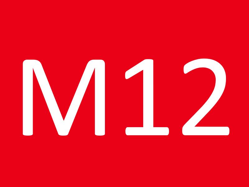 Болты М12