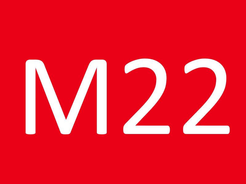 Болты М22